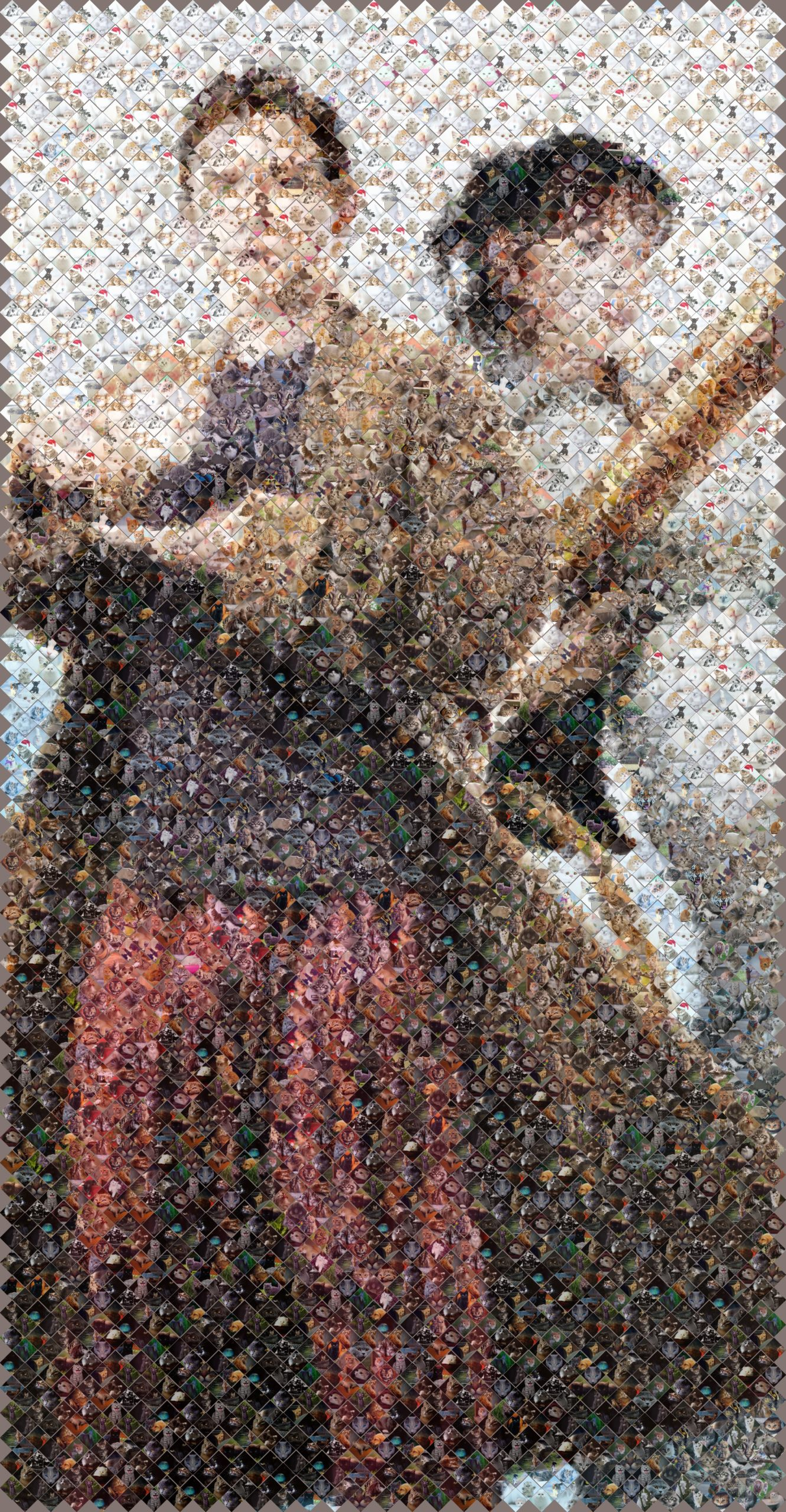 mosaic of arthur and trillian in kittens