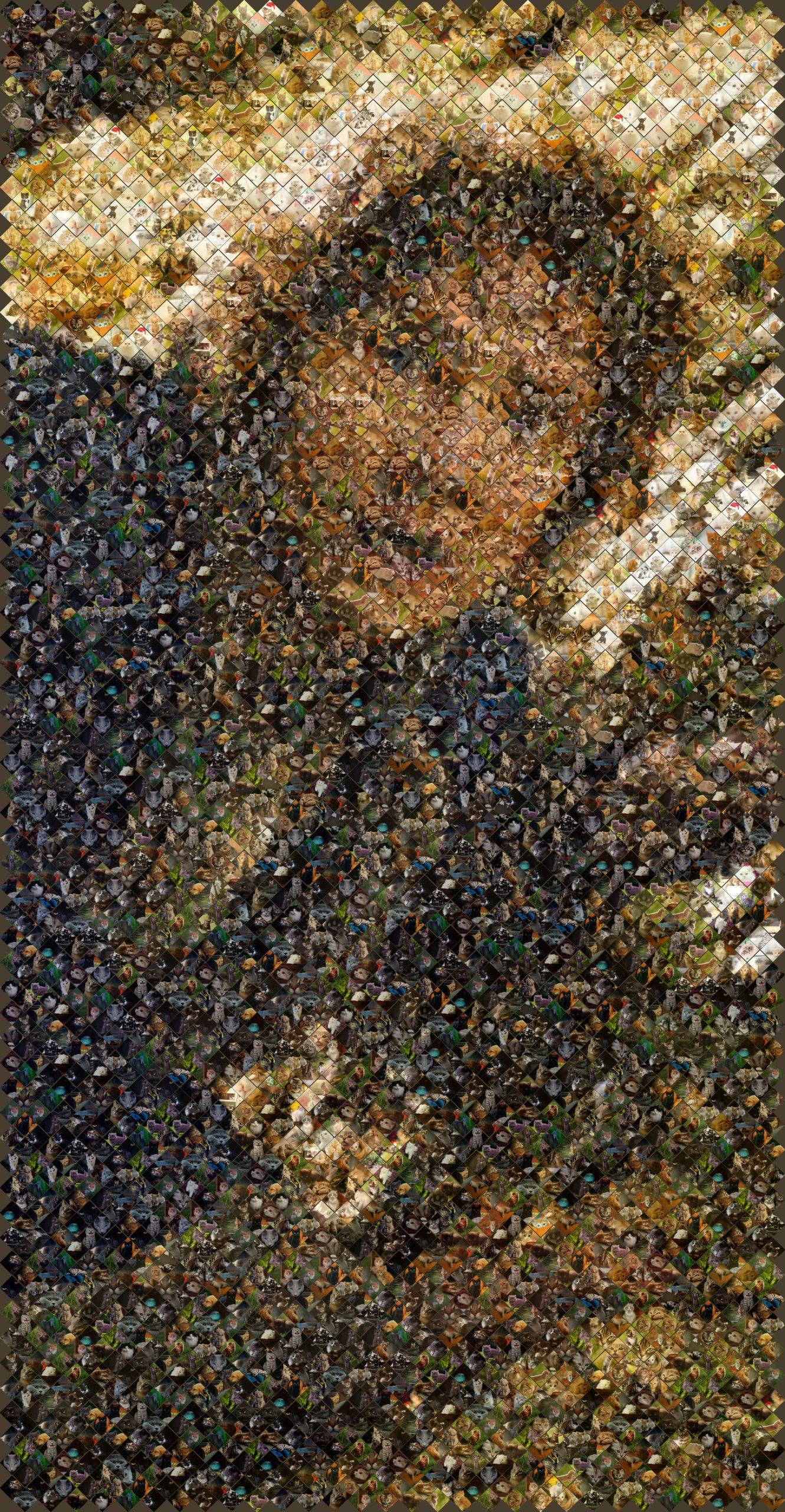 mosaic of bilbo bagins in kittens