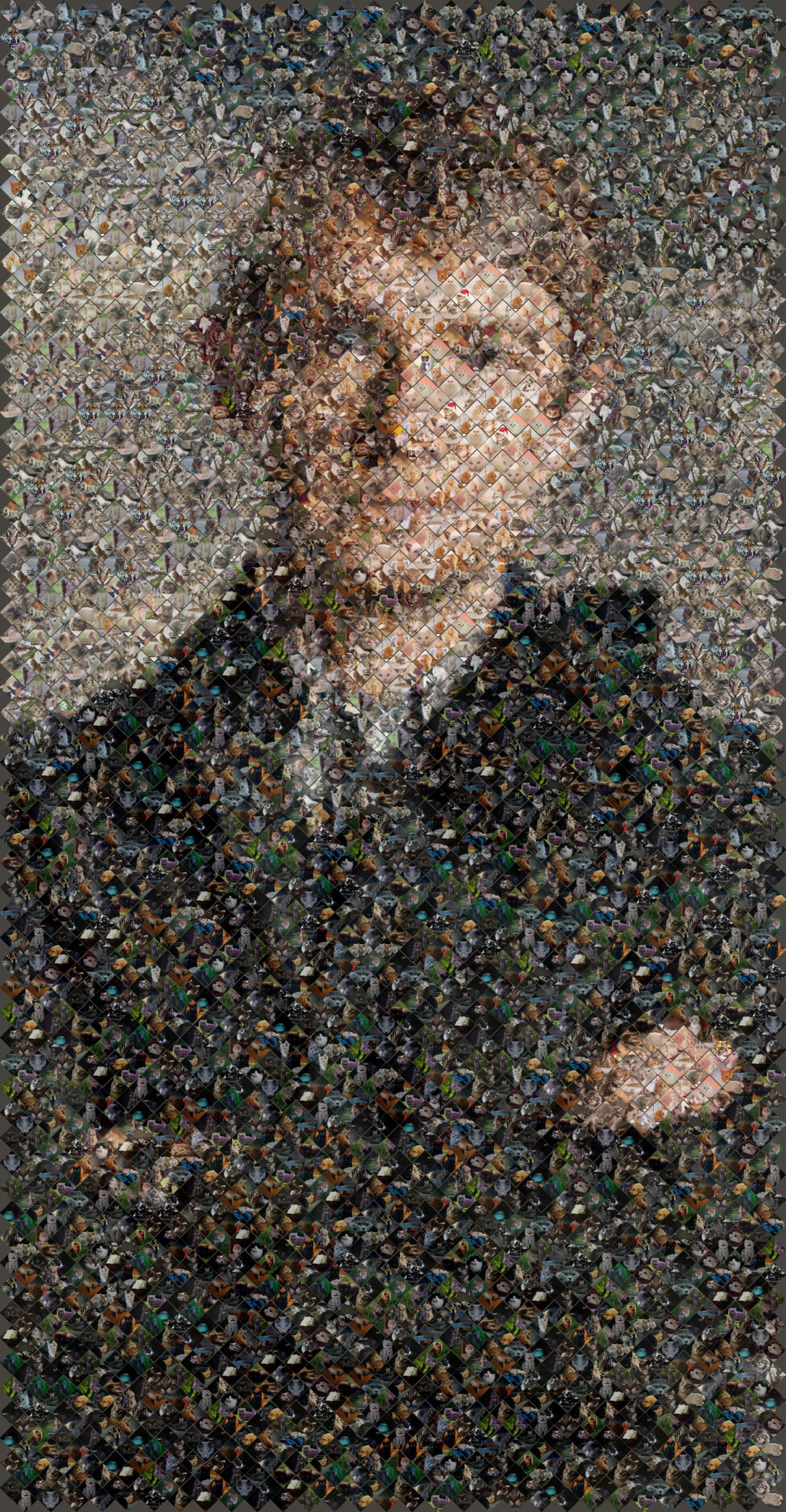 mosaic of watson in kittens